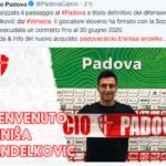 Andelkovic al Padova