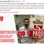 Cherubin al Padova